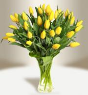 Bouquet of yellow tulips - Get flowers in Prague