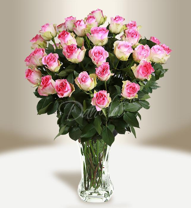 Bouquet of striped roses - Daniela Fleur